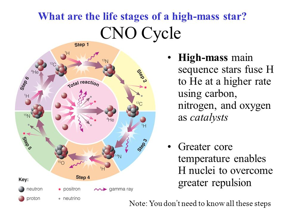 CNO Cycle What are the life stages of a high-mass star