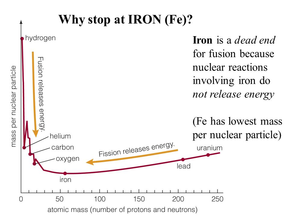 Why stop at IRON (Fe) Iron is a dead end for fusion because nuclear reactions involving iron do not release energy.