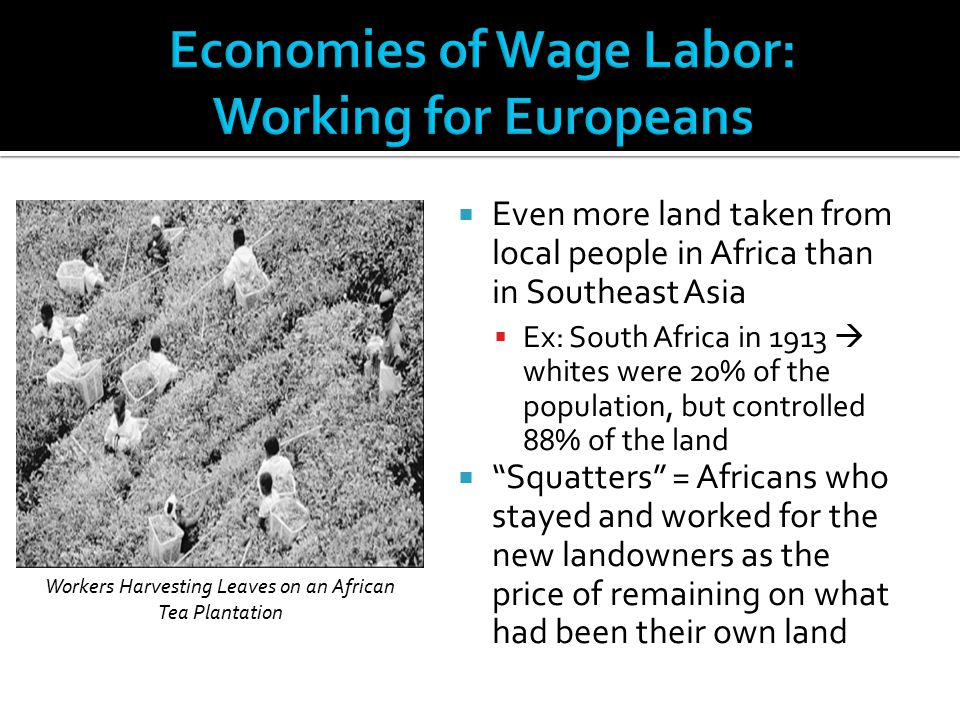 Economies of Wage Labor: Working for Europeans