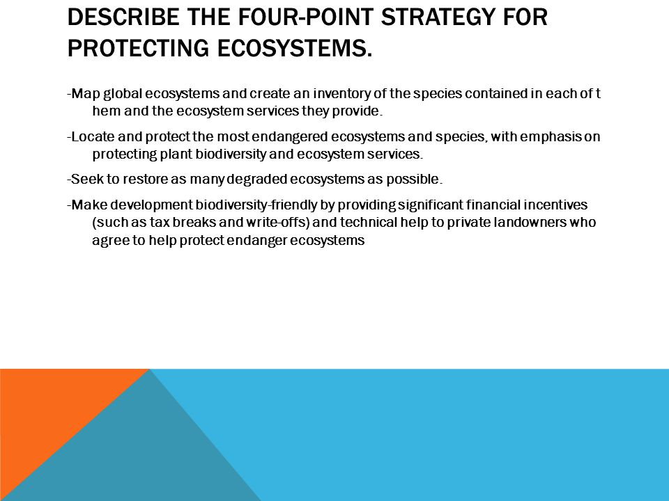Describe the four-point strategy for protecting ecosystems.