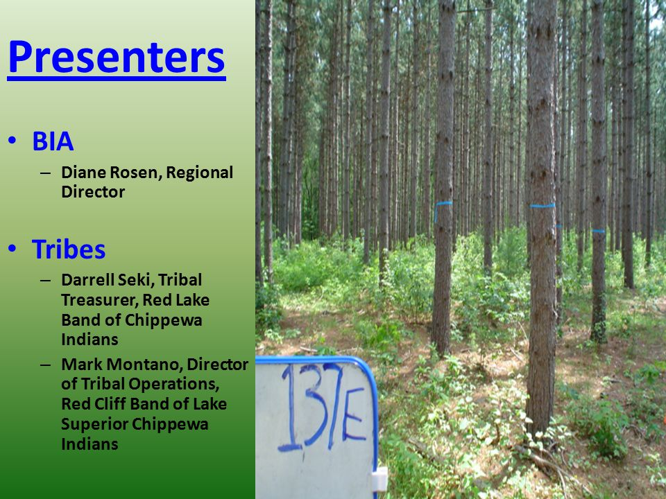Presenters BIA Tribes Diane Rosen, Regional Director