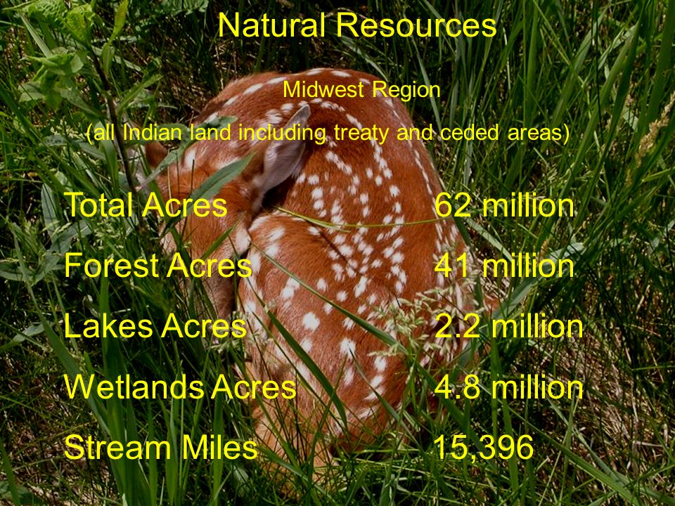Wetlands Acres 4.8 million Stream Miles 15,396