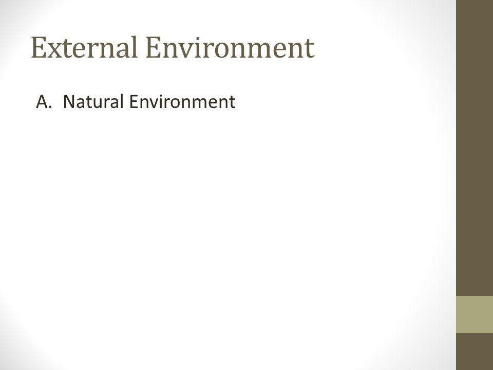 External Environment A. Natural Environment