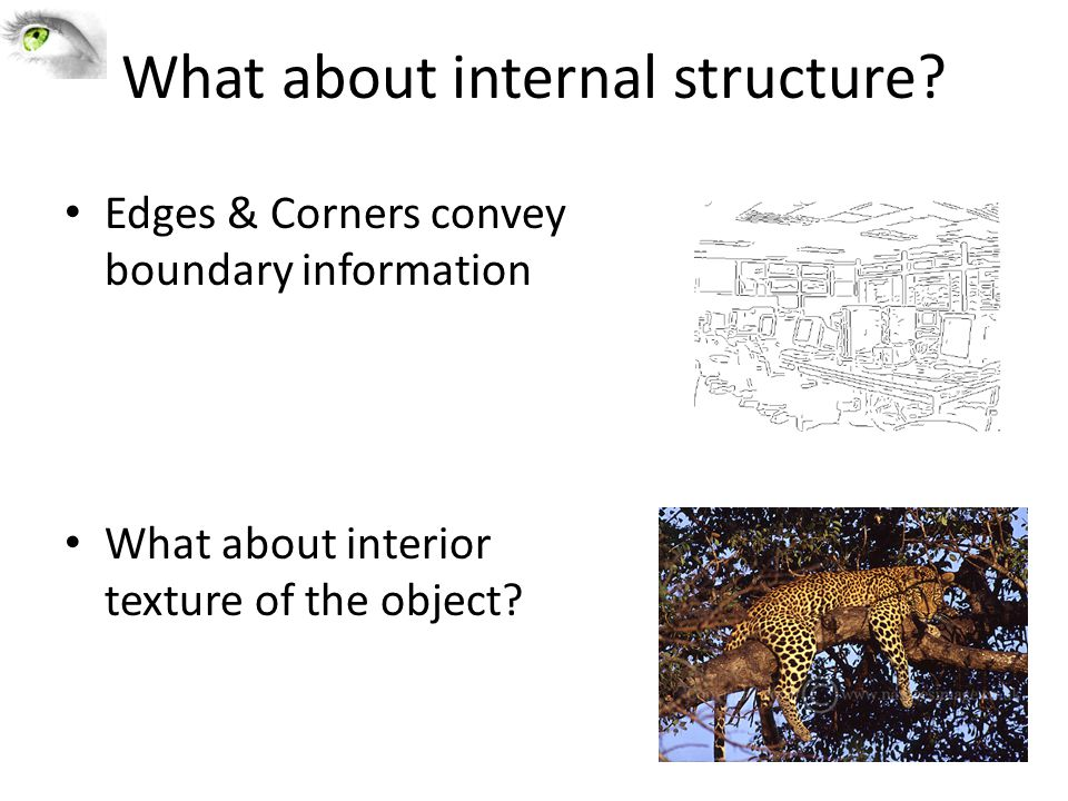 What about internal structure