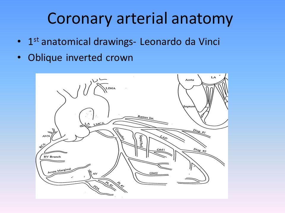Coronary arterial anatomy