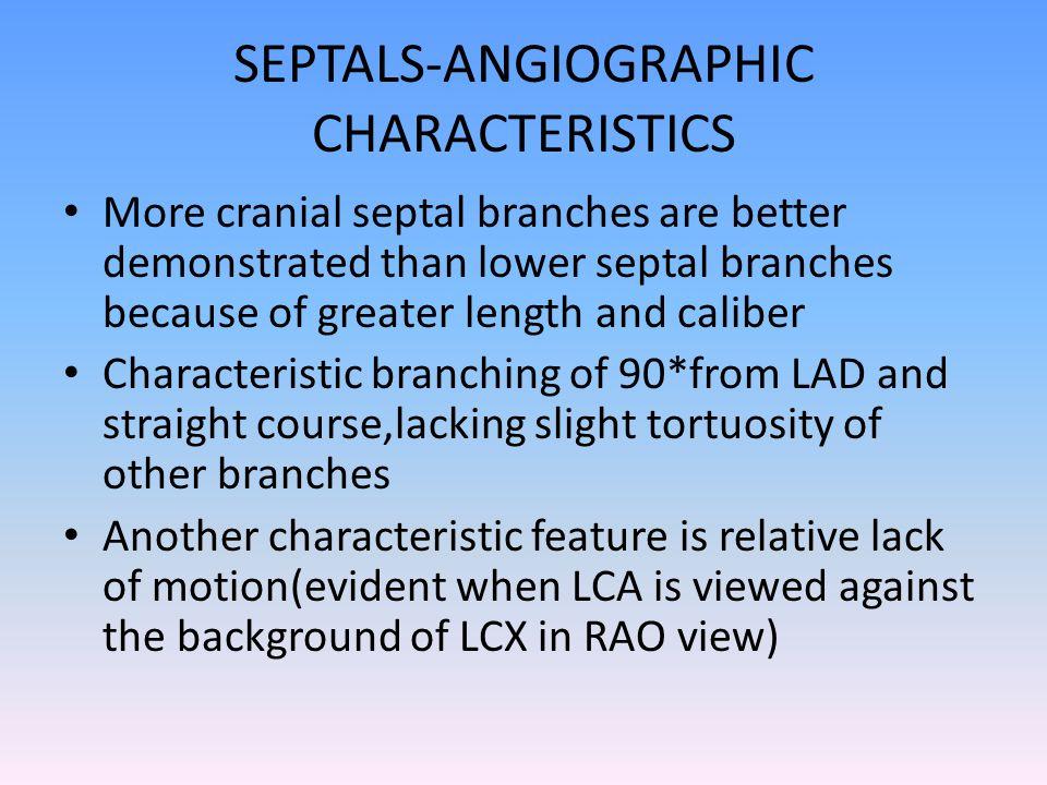 SEPTALS-ANGIOGRAPHIC CHARACTERISTICS