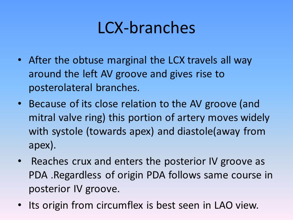 LCX-branches After the obtuse marginal the LCX travels all way around the left AV groove and gives rise to posterolateral branches.