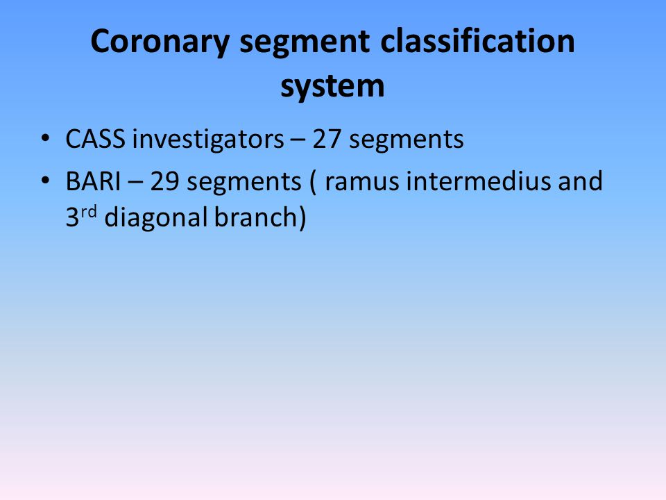 Coronary segment classification system