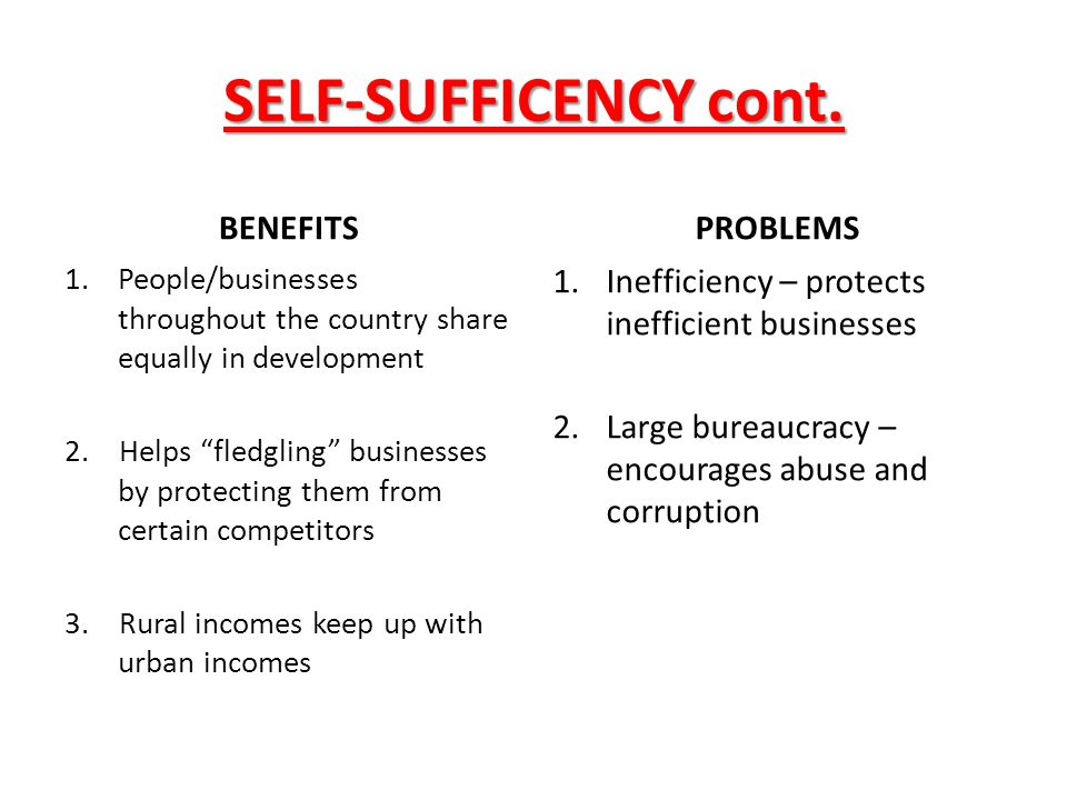 SELF-SUFFICENCY cont. BENEFITS PROBLEMS