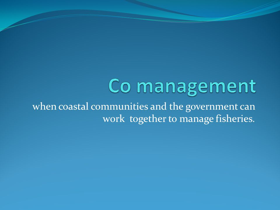 Co management when coastal communities and the government can work together to manage fisheries.