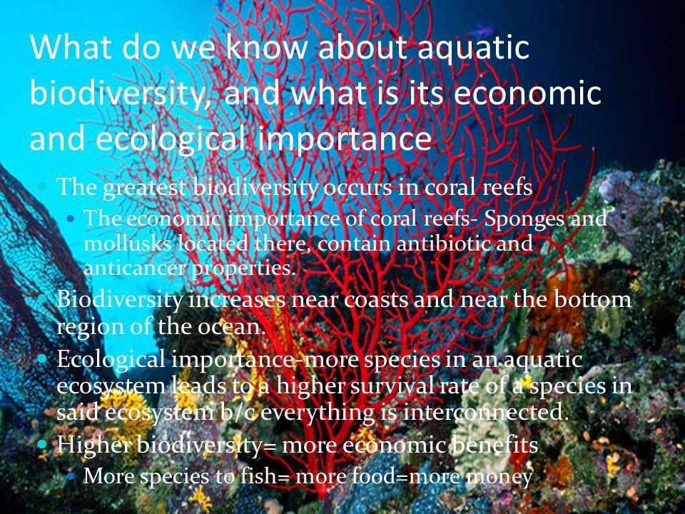 What do we know about aquatic biodiversity, and what is its economic and ecological importance