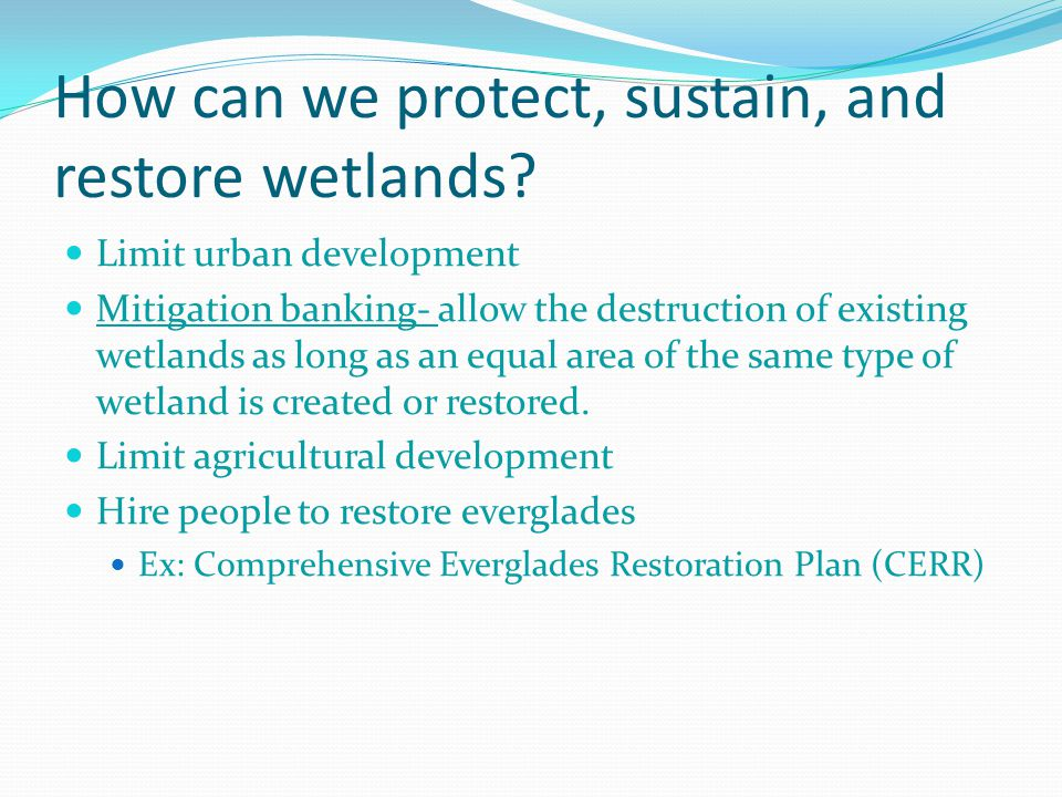 How can we protect, sustain, and restore wetlands