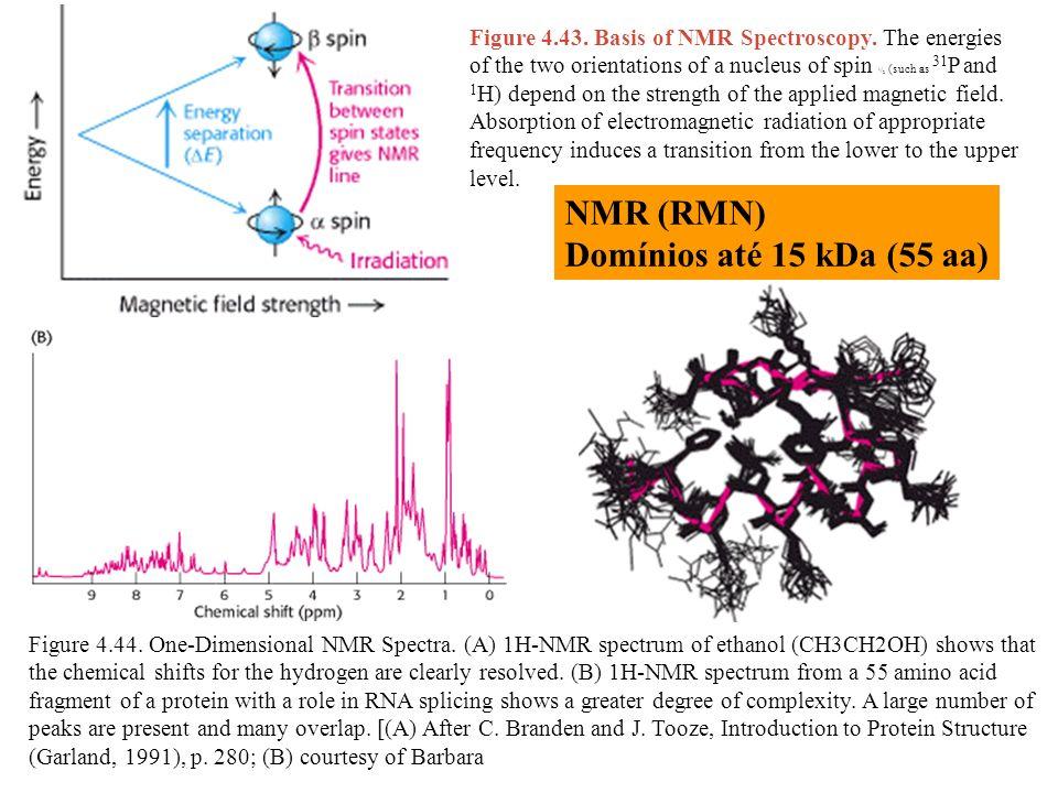 NMR (RMN) Domínios até 15 kDa (55 aa)