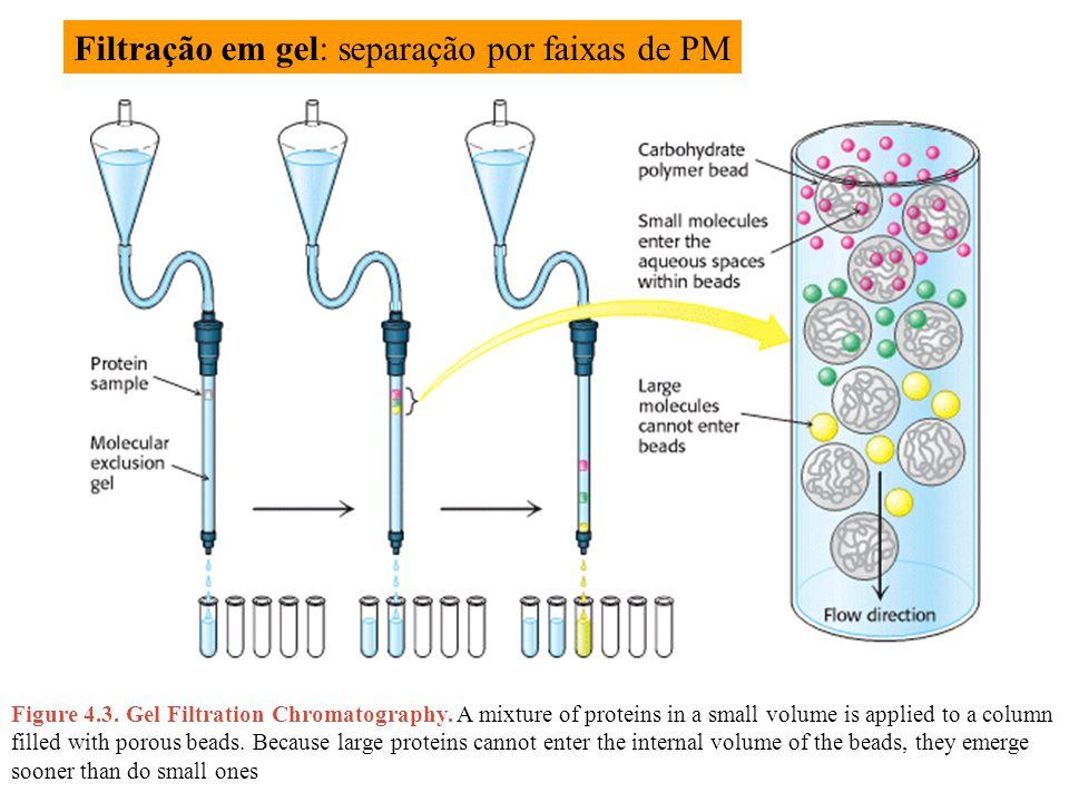 Filtração em gel: separação por faixas de PM