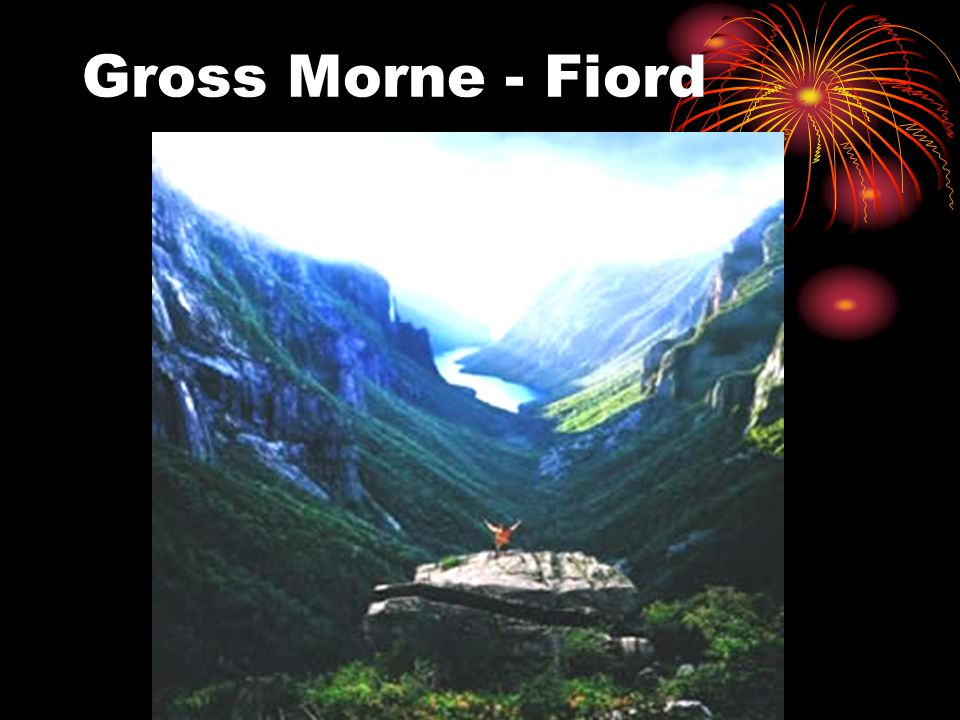 Gross Morne - Fiord