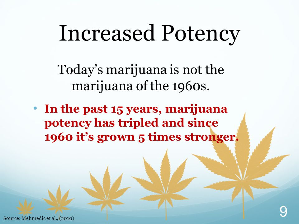 Today's marijuana is not the marijuana of the 1960s.