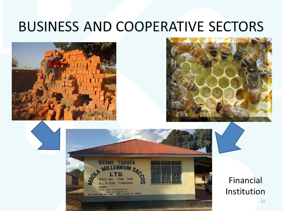 BUSINESS AND COOPERATIVE SECTORS