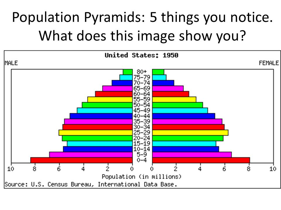Population Pyramids: 5 things you notice. What does this image show you
