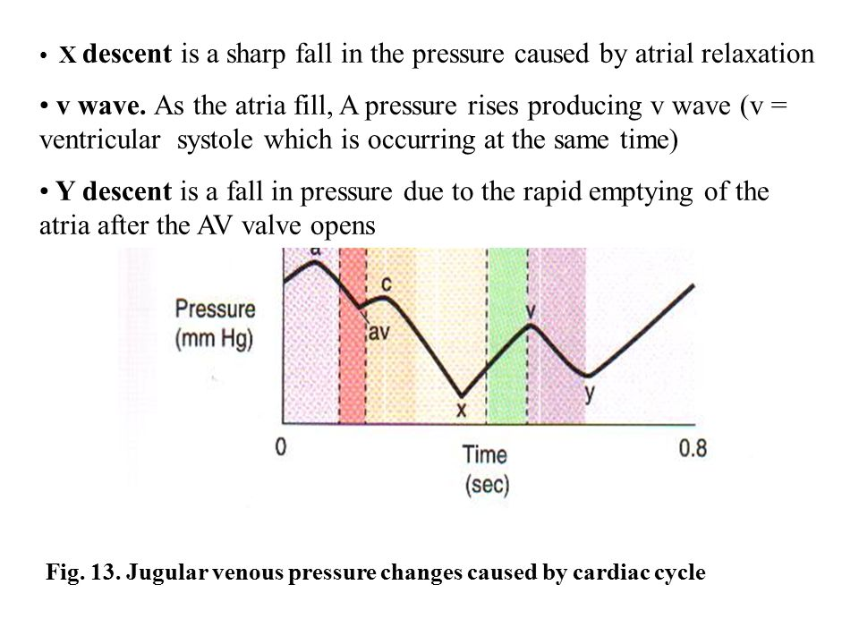 X descent is a sharp fall in the pressure caused by atrial relaxation
