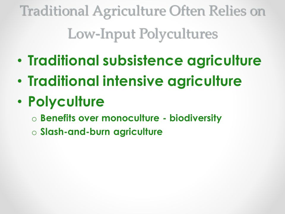 Traditional Agriculture Often Relies on Low-Input Polycultures