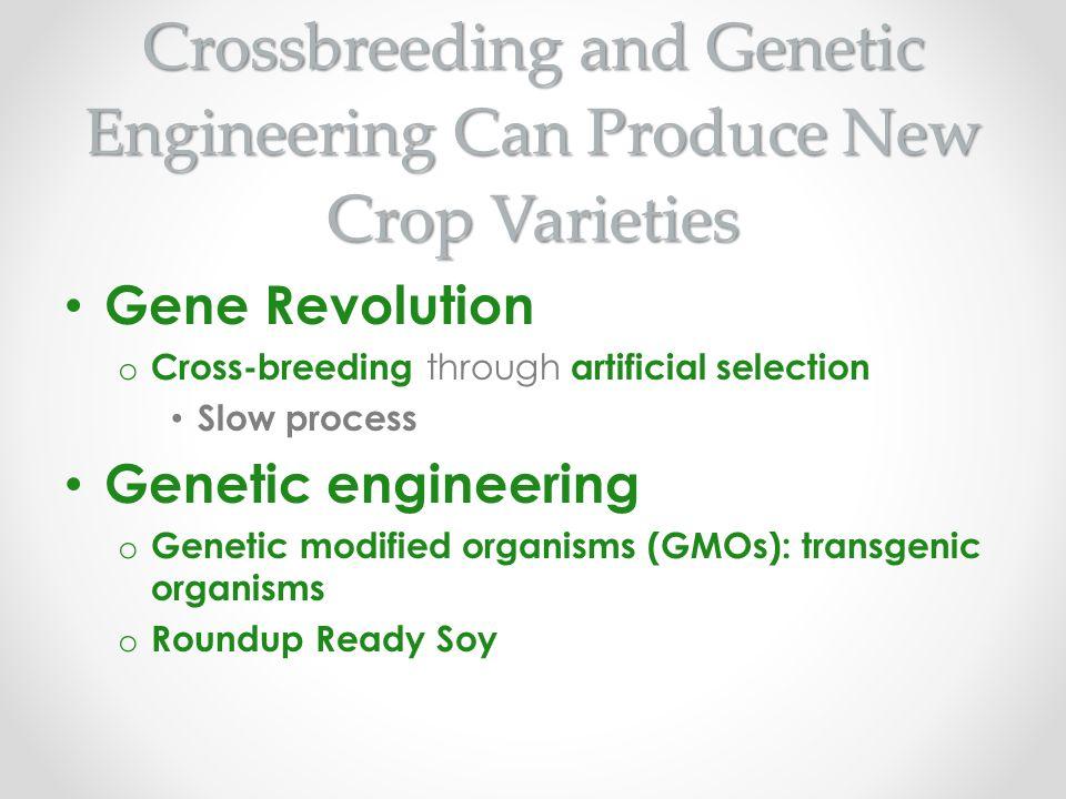 Crossbreeding and Genetic Engineering Can Produce New Crop Varieties