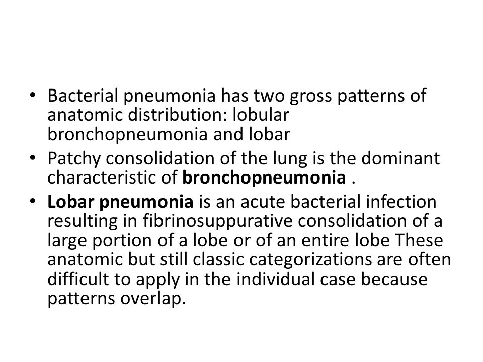 Bacterial pneumonia has two gross patterns of anatomic distribution: lobular bronchopneumonia and lobar