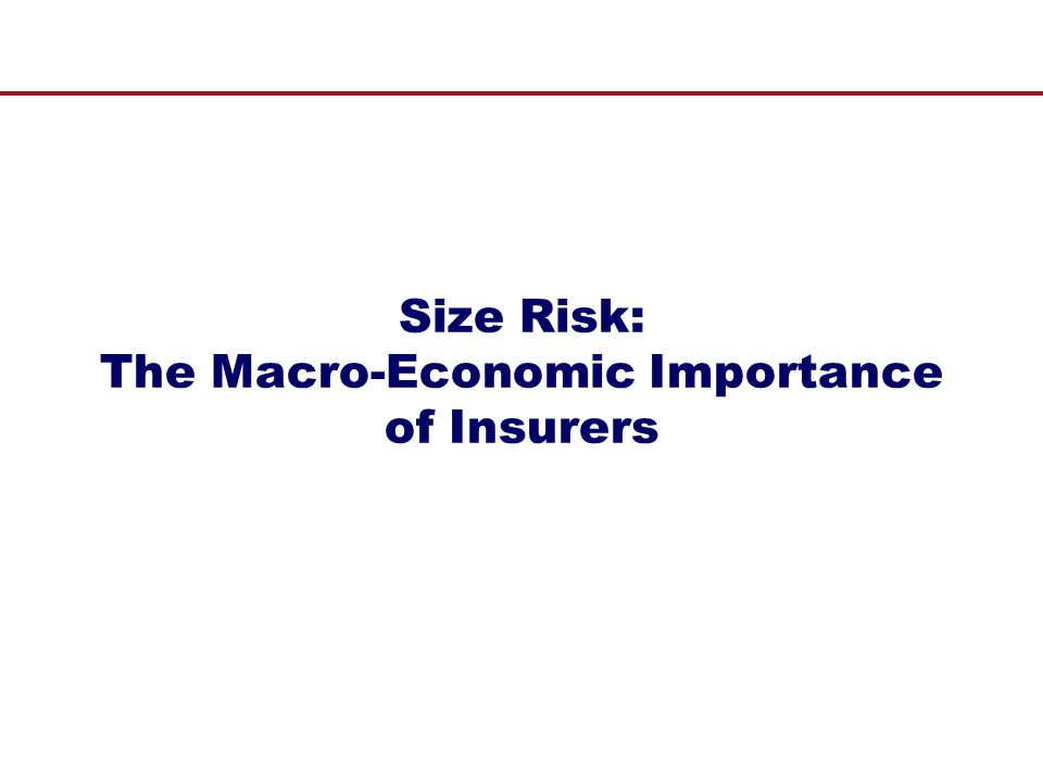 Size Risk: The Macro-Economic Importance of Insurers