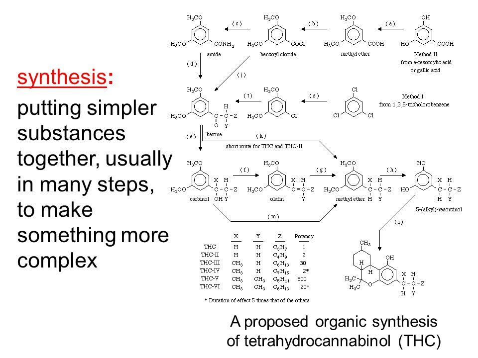 A proposed organic synthesis of tetrahydrocannabinol (THC)