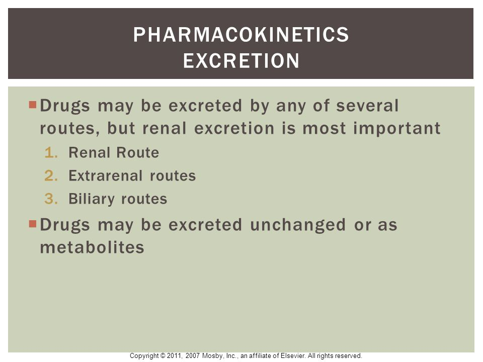 Pharmacokinetics excretion