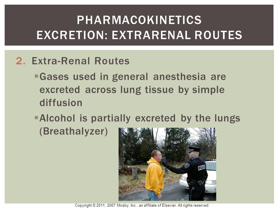 Pharmacokinetics excretion: extrarenal routes