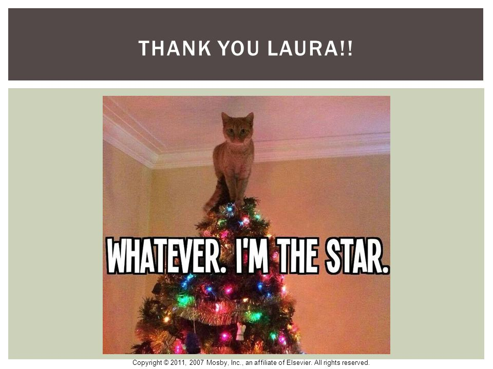 Thank you laura!!