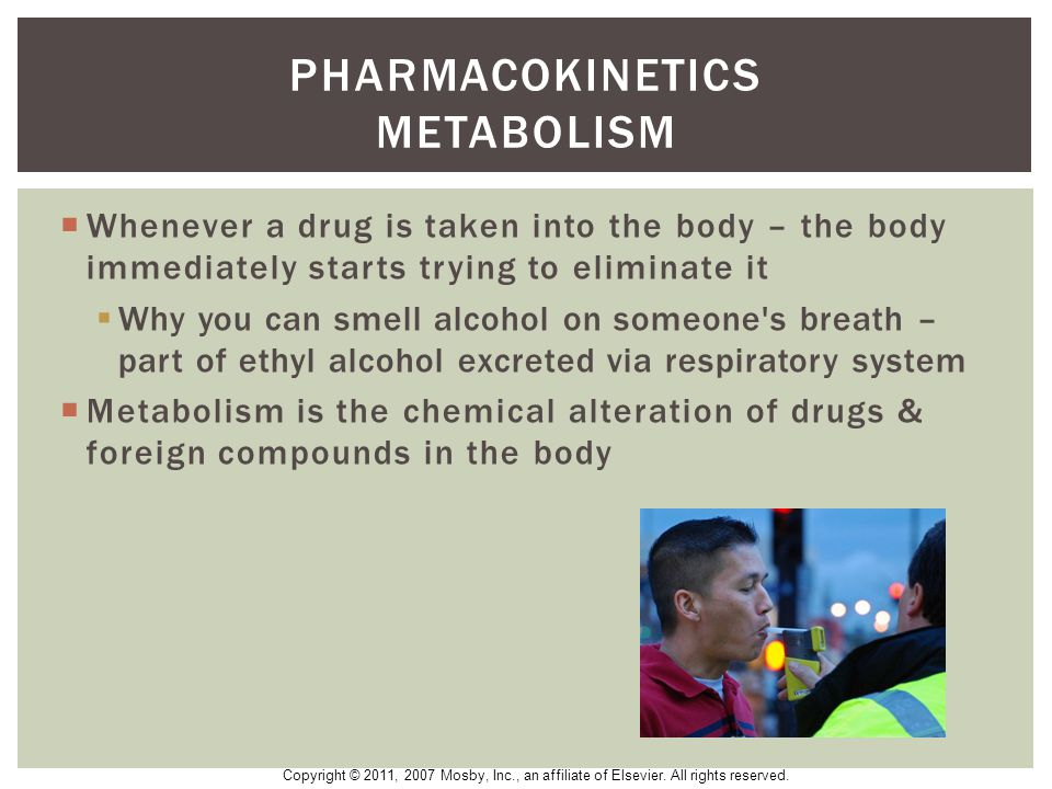 Pharmacokinetics metabolism
