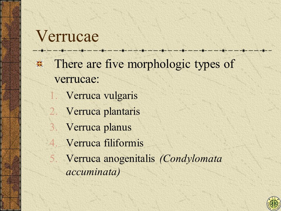 Verrucae There are five morphologic types of verrucae: