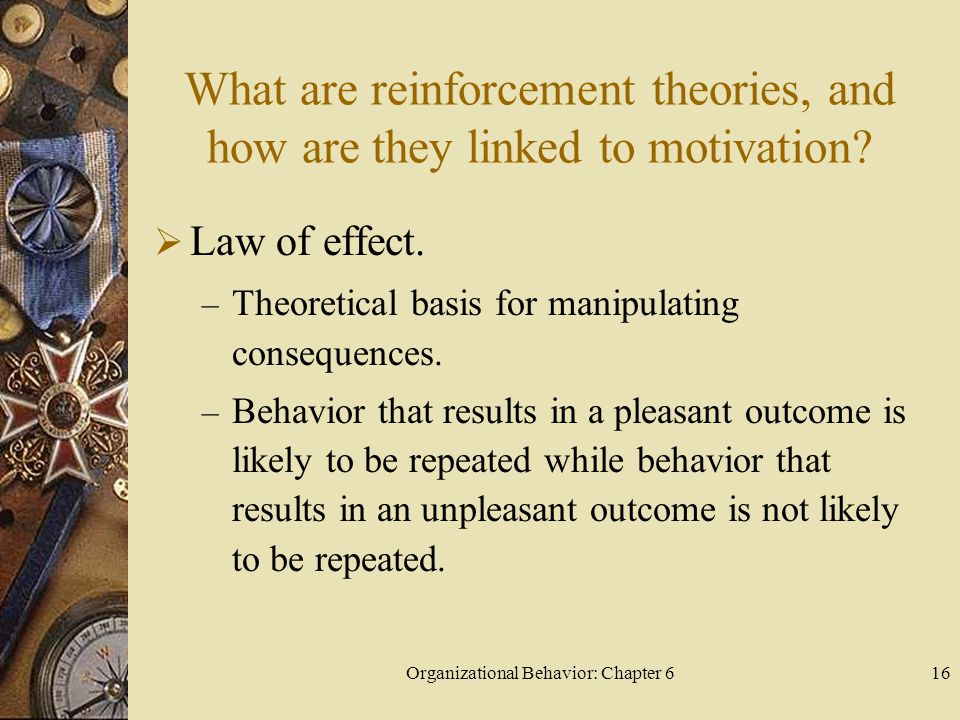 Organizational Behavior: Chapter 6