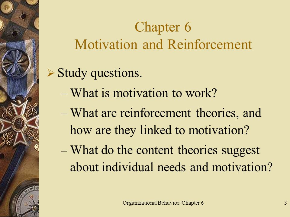 Chapter 6 Motivation and Reinforcement