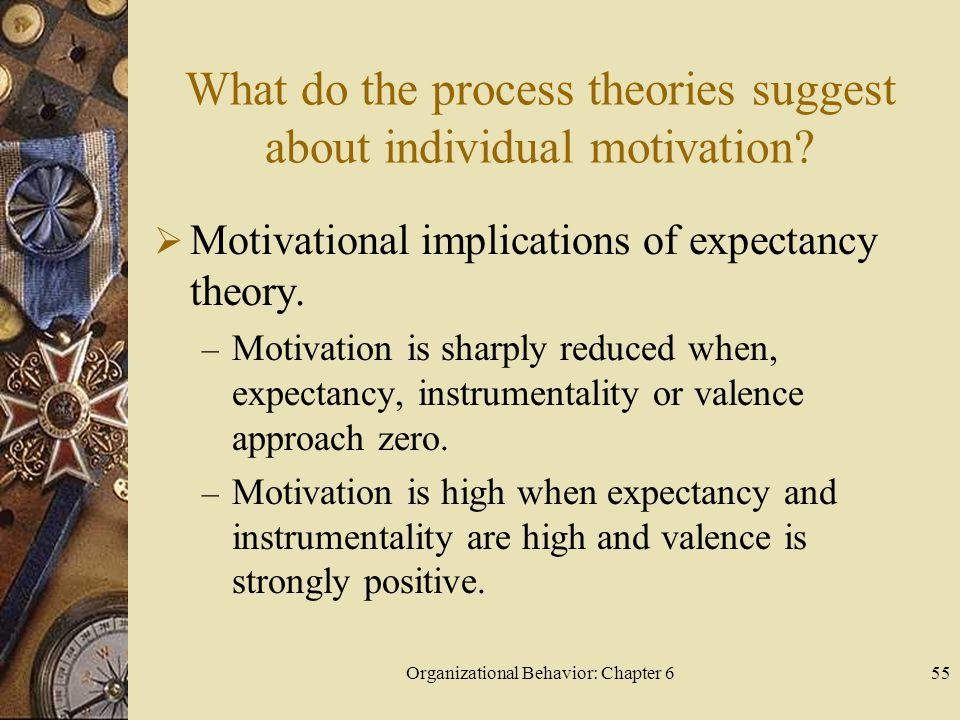 What do the process theories suggest about individual motivation