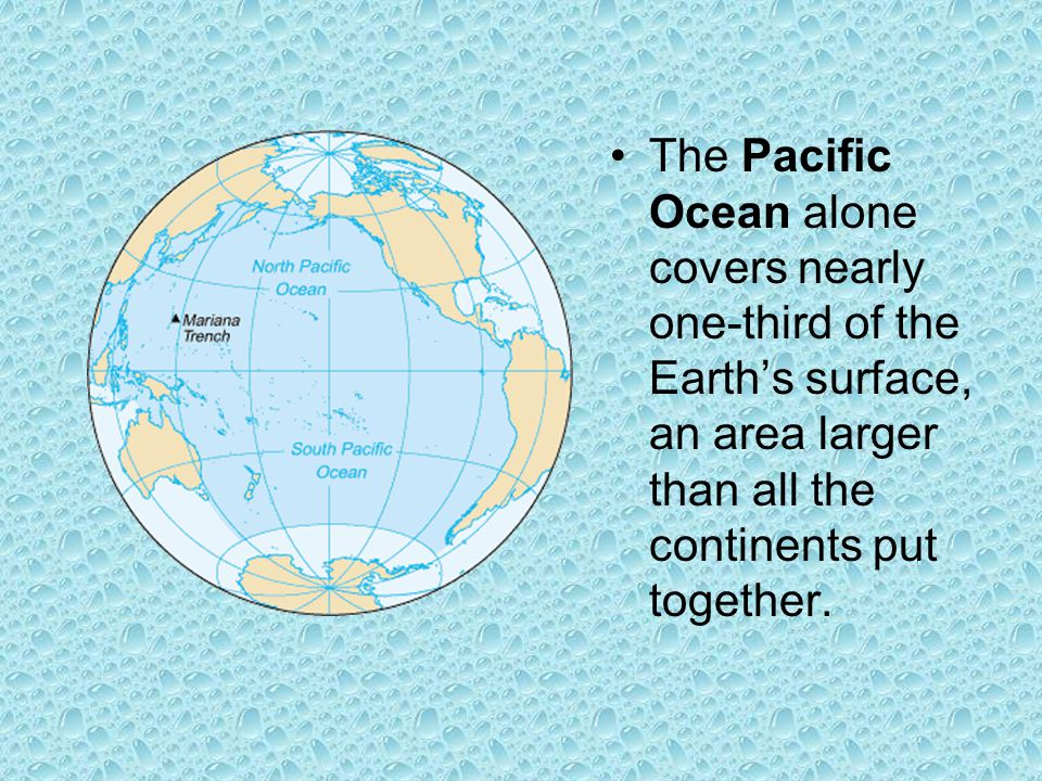 The Pacific Ocean alone covers nearly one-third of the Earth's surface, an area larger than all the continents put together.