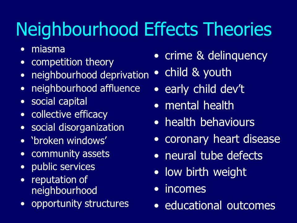 Neighbourhood Effects Theories