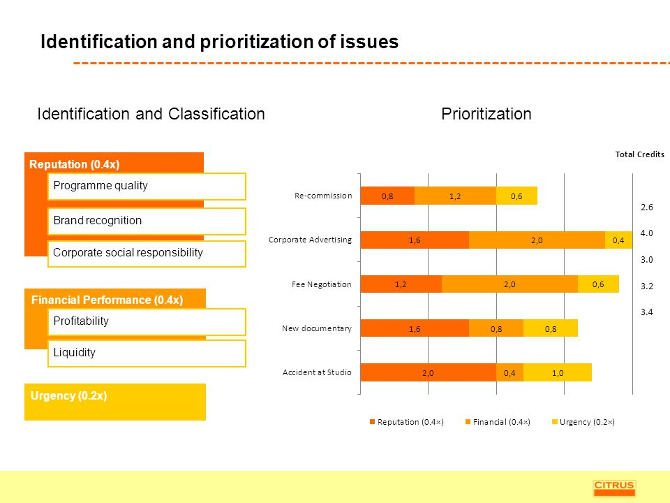 Identification and prioritization of issues