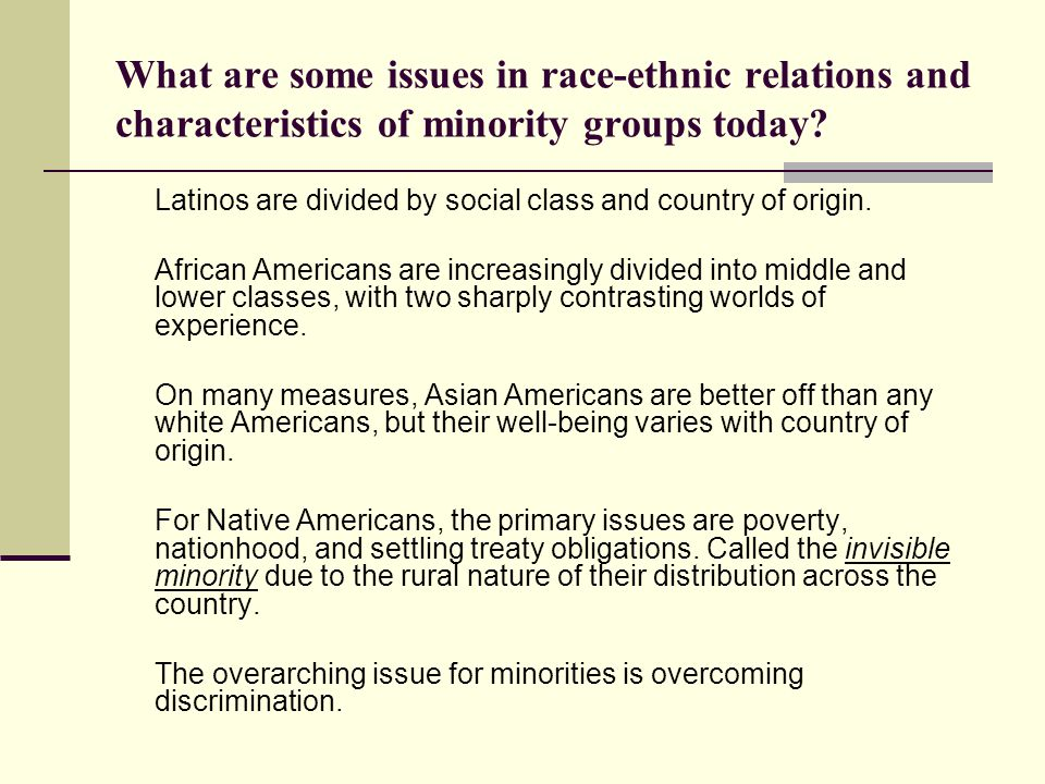 What are some issues in race-ethnic relations and characteristics of minority groups today