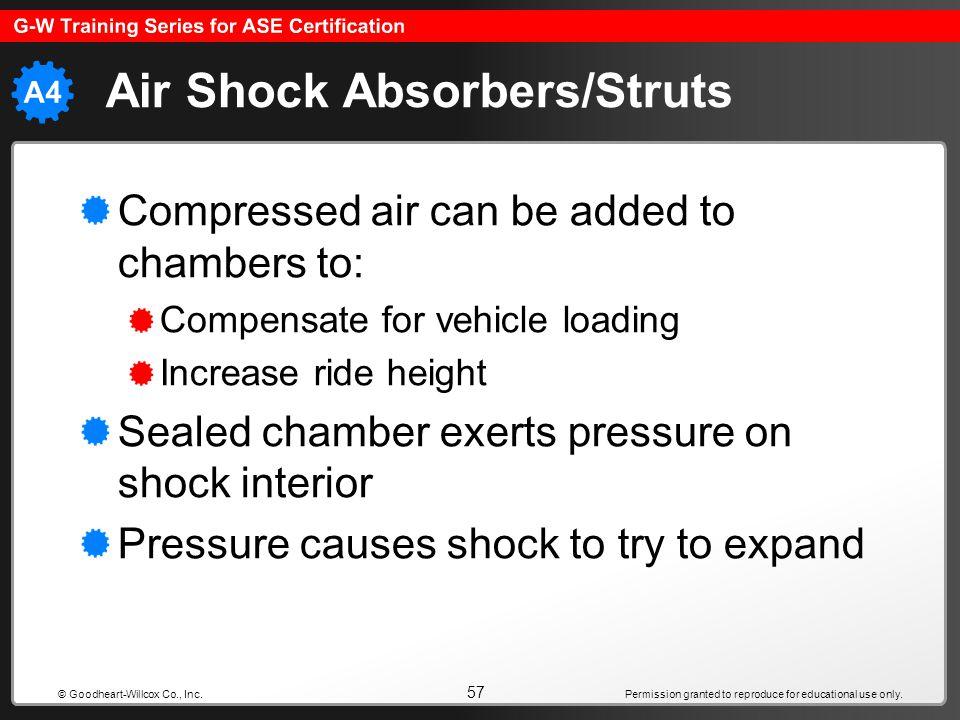 Air Shock Absorbers/Struts