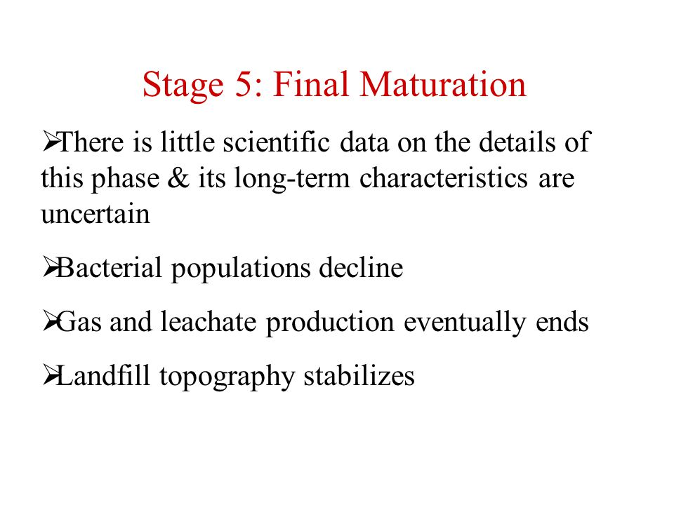 Stage 5: Final Maturation