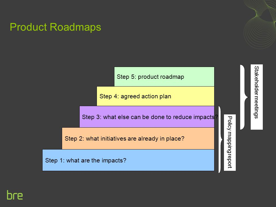 Product Roadmaps Step 5: product roadmap Step 4: agreed action plan