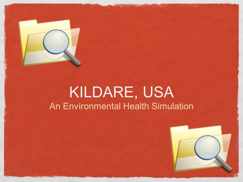 An Environmental Health Simulation