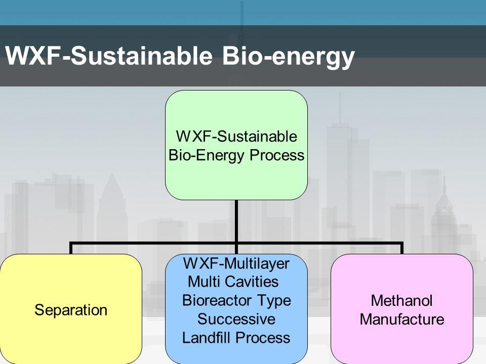 WXF-Sustainable Bio-energy