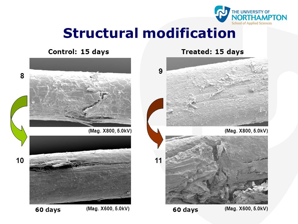 Structural modification