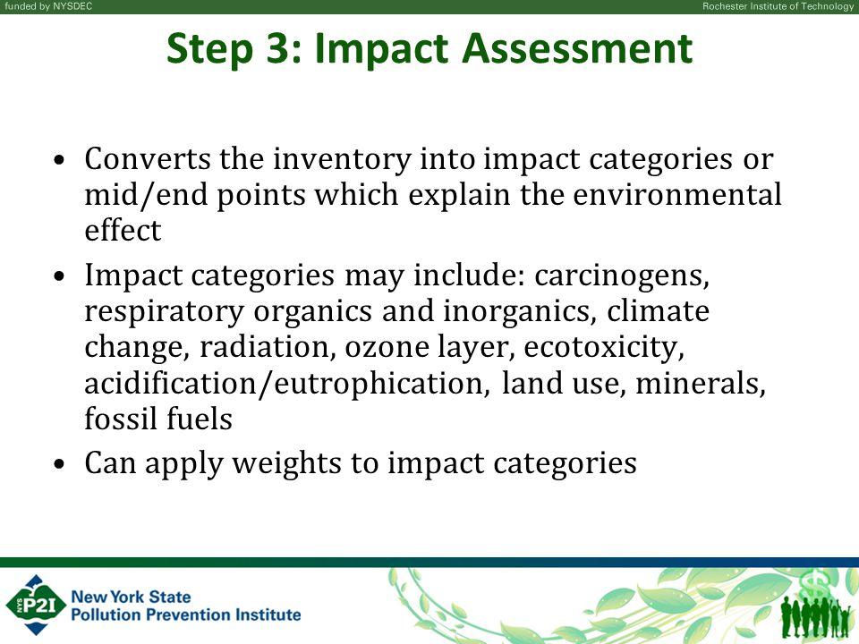 Step 3: Impact Assessment