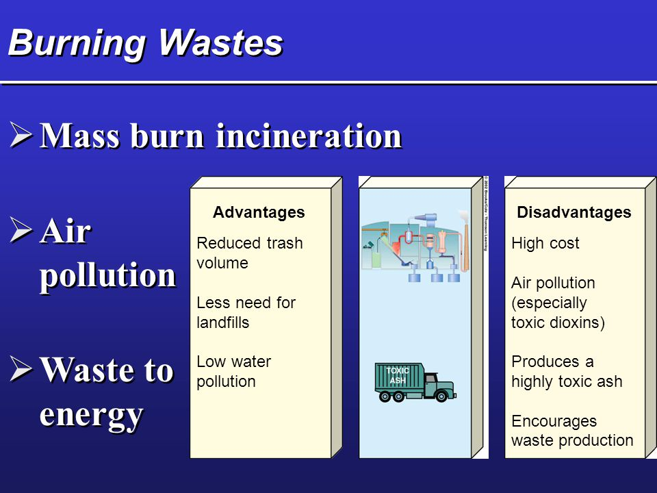 Mass burn incineration