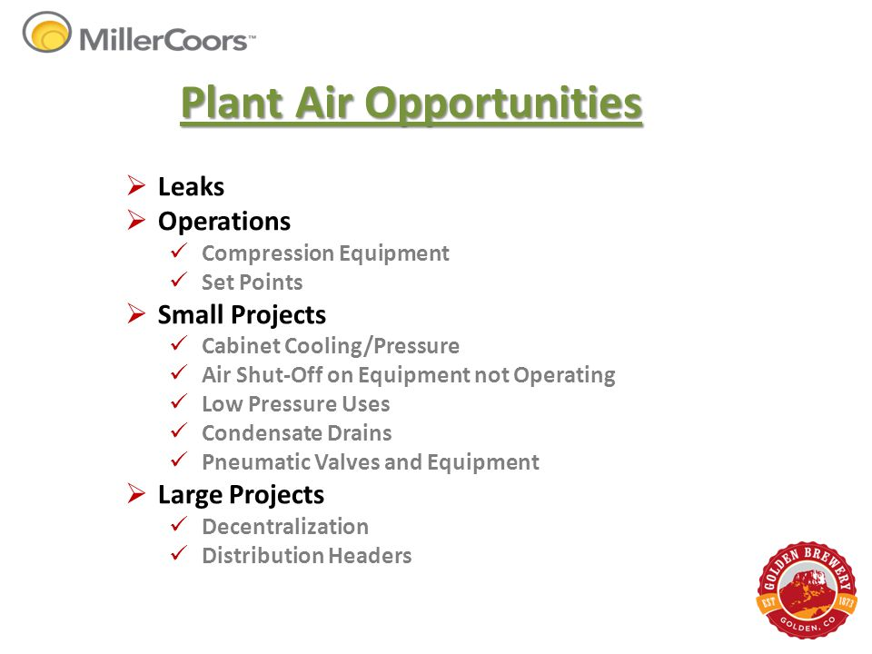 Plant Air Opportunities