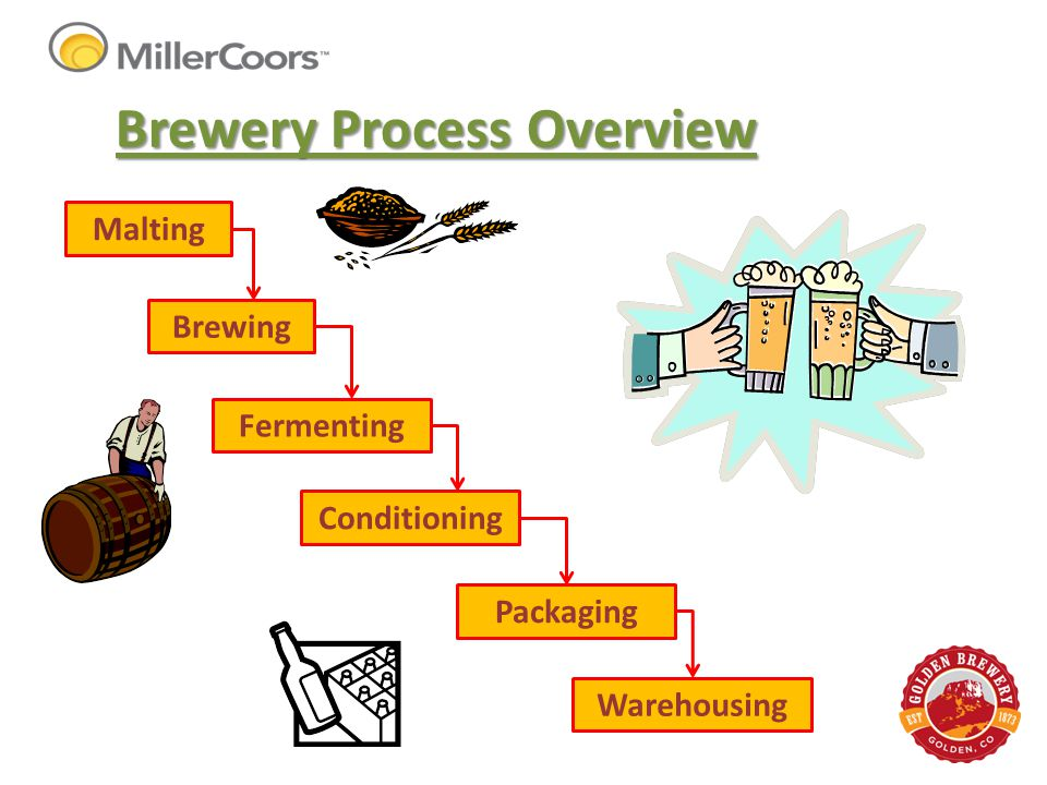 Brewery Process Overview